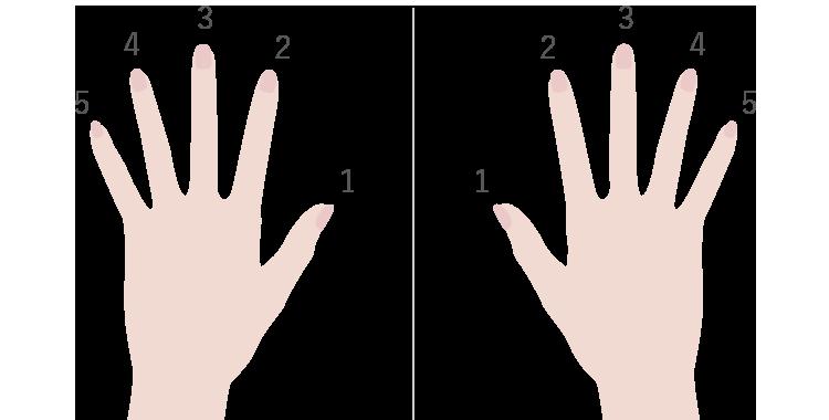 すべての指に様々な意味がある
