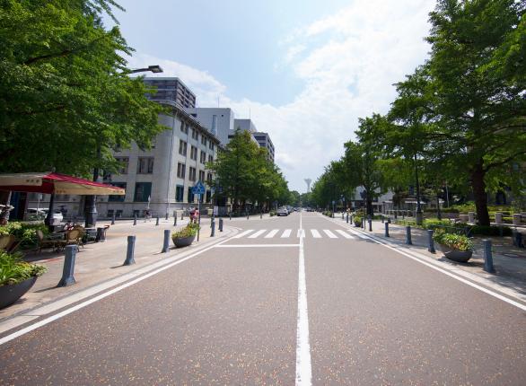 日本大通りの写真