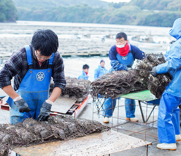 アコヤ貝の浜揚げ